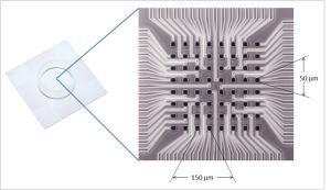 Med Probe Electrode Zoom
